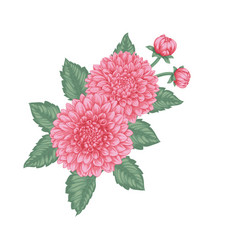 beautiful bouquet dahlias with effect vector image