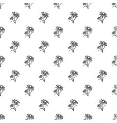 branch of chamomile pattern seamless vector image