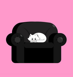 white cat on black armchair home pet on chair vector image