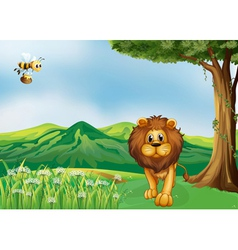 A lion and a flying bee at the hills vector image vector image