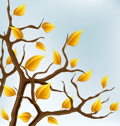 Autumn branch with yellow leaves vector image