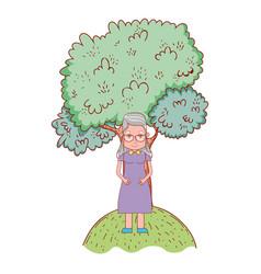 cute grandmother cartoon vector image