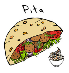 Falafel pita or meatball salad in pocket bread and vector