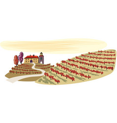 Hilly landscape cultivated vineyards vector