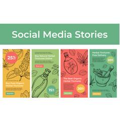Set organic herbal tinctures social media vector