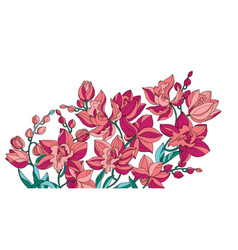 Sketch style line-art pink orchid flowers vector