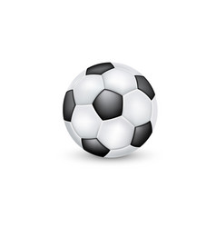 soccer ball classic black and white design vector image