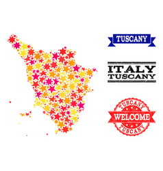 star mosaic map of tuscany region and grunge vector image