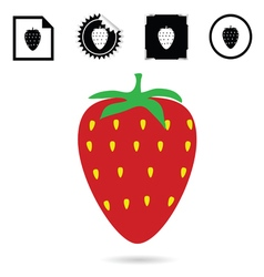 strawberry color red vector image