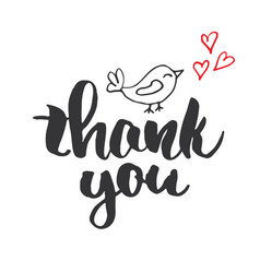Thank you lettering quote hand drawn calligraphic vector