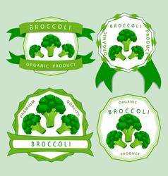 The green broccoli vector