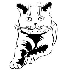 Tabby cat vector