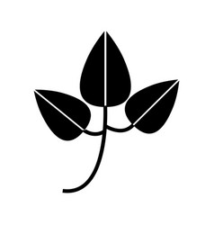 leafs plant isolated icon vector image vector image