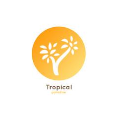 logo tropical palm vector image