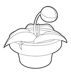 plant in pot icon outline style vector image