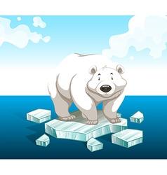 Polar bear standing on iceberg vector