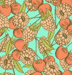 Sketch raspberry and cherry in vintage style vector image