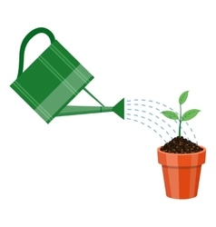 Watering can and plant in the pot vector image