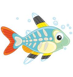 X-ray fish vector