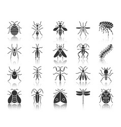 Danger insect black silhouette icons set vector