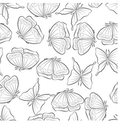 Flight of the butterfly seamless pattern with vector