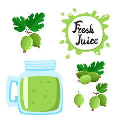 juice with gooseberry in a glass bank vector image