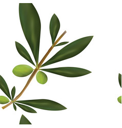 Seamless pattern with big olive tree branch vector