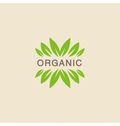 Text With Leaf Crowning Organic Product Logo vector