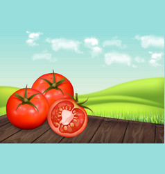tomatoes on wooden table realistic green vector image