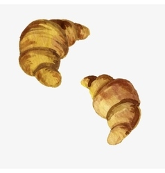 watercolor drawing croissants vector image vector image