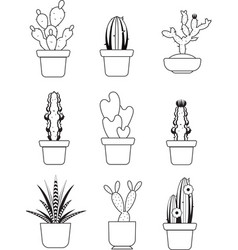 hand drawn outline cactus desert thorn vector image