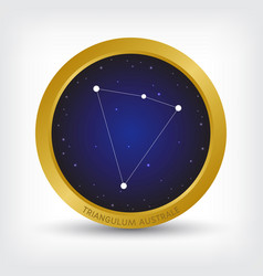 triangulum australe constellation in golden circle vector image vector image