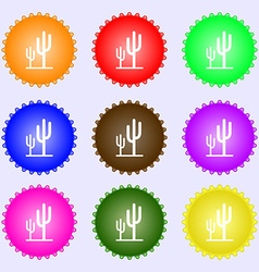 Cactus icon sign Big set of colorful diverse vector