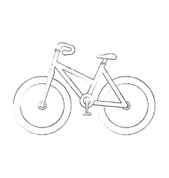 isolated sport bicycle vector image