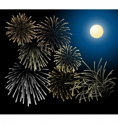 silver and golden fireworks vector image