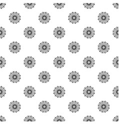 top view chamomile pattern seamless vector image