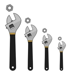 Wrench tools set Color vector image