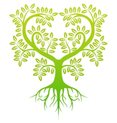 green tree silhouette vector image vector image