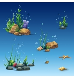 Kit of the underwater world with shell seaweed vector image vector image