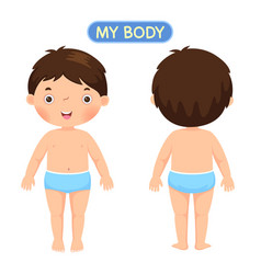 a boy showing parts of the body vector image vector image