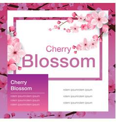 cherry blossom banner design sakura japan vector image