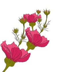 Hand-drawn flower isolated on white background vector image