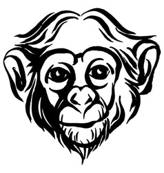 Hand drawn portrait of monkey chimpanzee Black and vector image