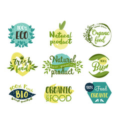 set isolated labels stickers for organic food vector image