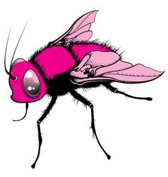 Cartoon fly vector
