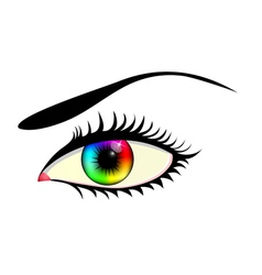eye with colorful iris vector image vector image