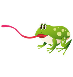 green frog with long tongue vector image