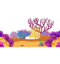 Seamless coral reef underwater vector