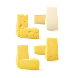 Set of Triangular Pieces Various Kind Cheese Swiss vector