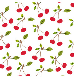 white background with pattern of cherries vector image